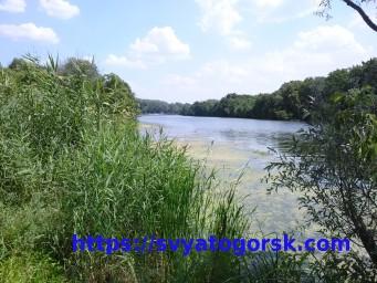 Отдых у реки